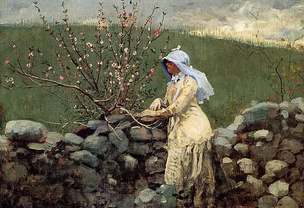 Winslow Homer (1836-1910)-Homer_Winslow_Peach_Blossoms2