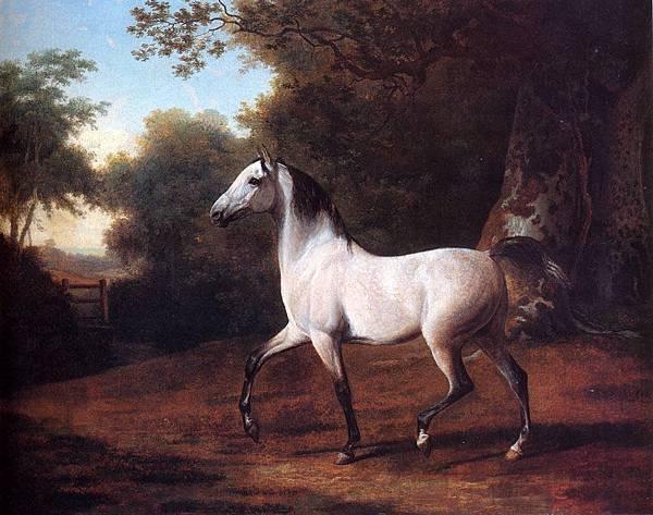 Jacques-Laurent Agasse (1767-1849)-Agasse_Jacques_Laurent_A_Grey_Arab_Stallion_In_A_Wooded_Landscape