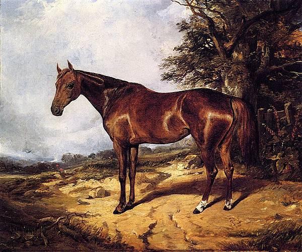 Thoroughbred - (Arthur Fitzwilliam Tait - 1848)