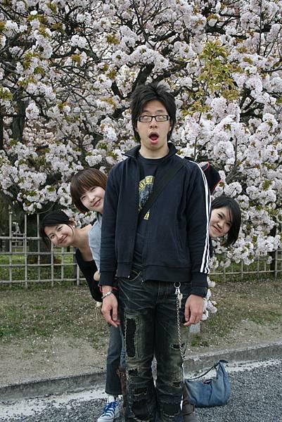 20080412京都御所 070.jpg
