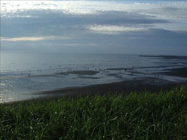 看海公園外的沙灘