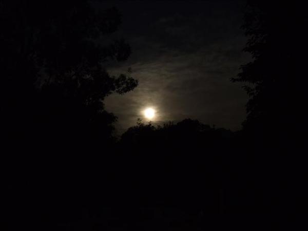 今晚的月兒~農曆十六