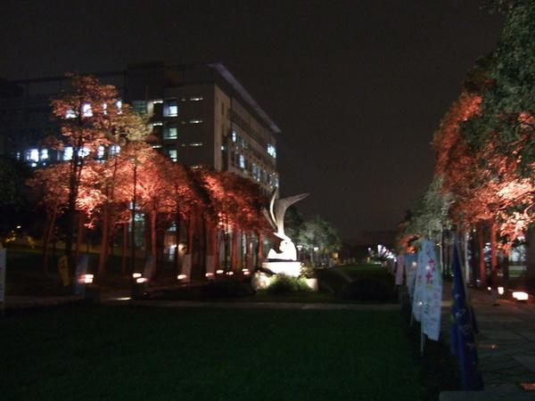 學校新裝設的夜景燈光