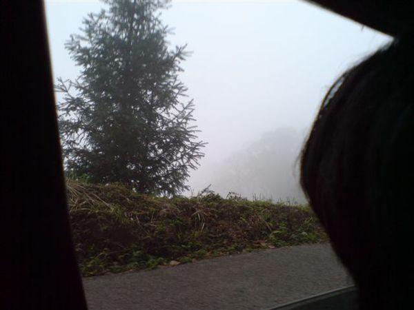 前往薰衣草森林的山路