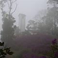 霧中的咖啡屋