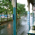 雨中即景-1