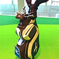 高爾夫球具組(大)2