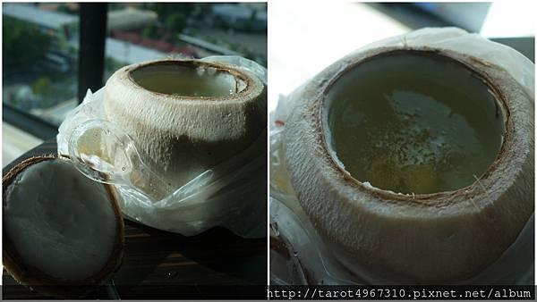 椰子燉燕窩.jpg