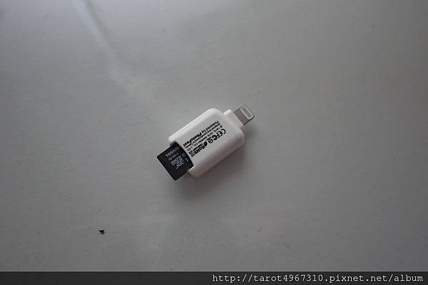 P1160554.JPG