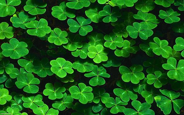 Luck-luck-luck-original.jpg