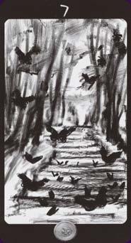 secret-forest-03242.jpg