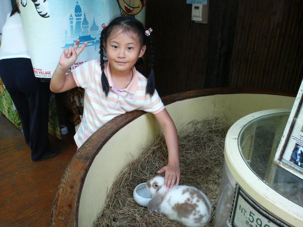 小萱唯一敢摸的小動物....小白兔