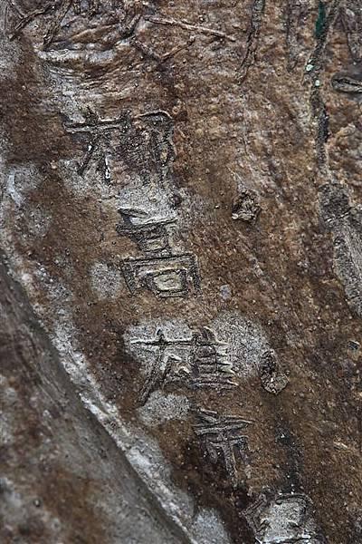 20111219_吳哥_161.JPG