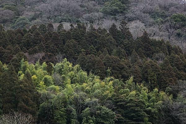 20120323_北九州_029.JPG