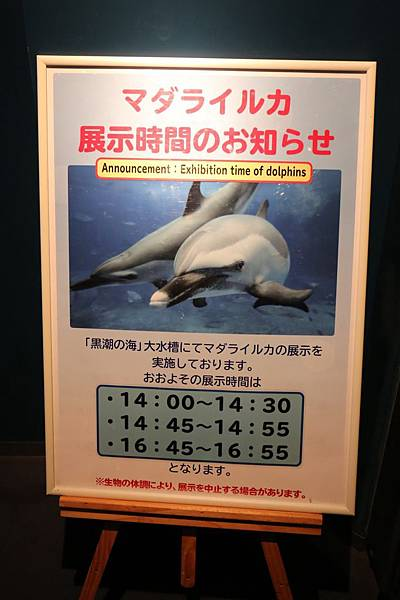 20140204_沖繩_109.JPG