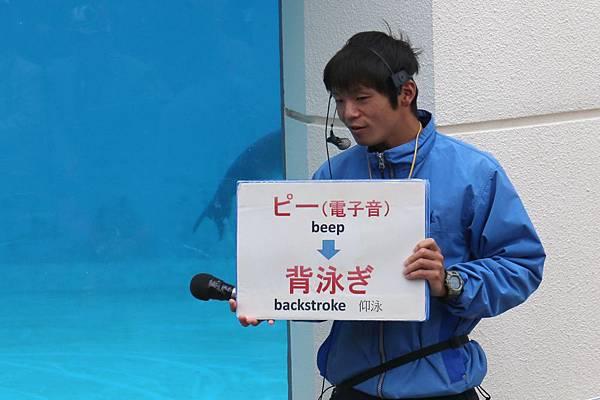20140204_沖繩_125.JPG