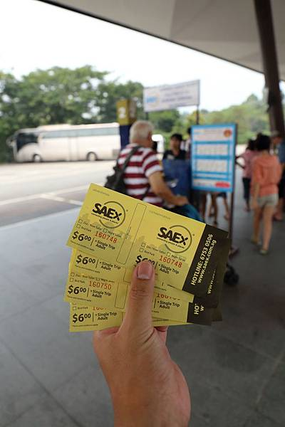 20141006_新加坡_78.JPG