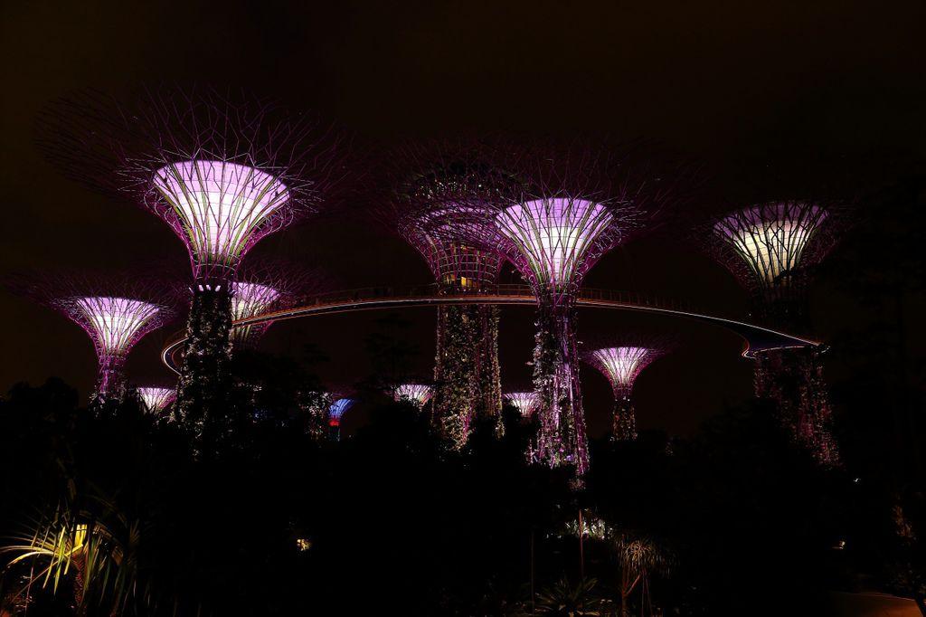 20141007_新加坡_102.JPG