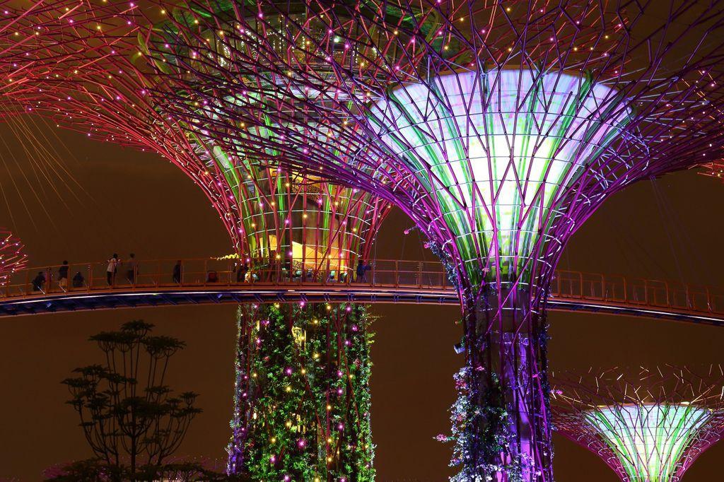 20141007_新加坡_114.JPG