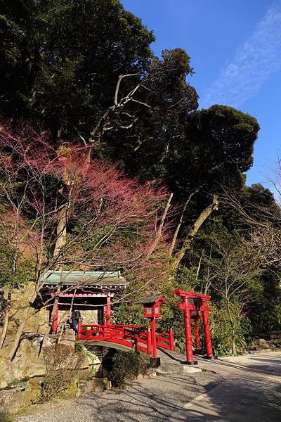 20150220_北九州_140.JPG