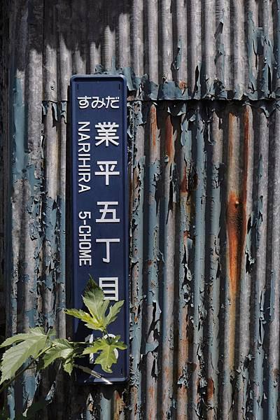 20150514_東京_025.JPG