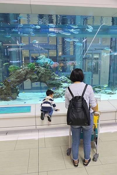 20151205_沖繩_044.JPG