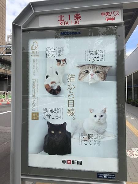 20160624_北海道_002.jpg