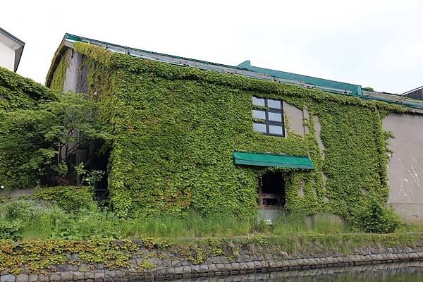 20160624_北海道_087.JPG