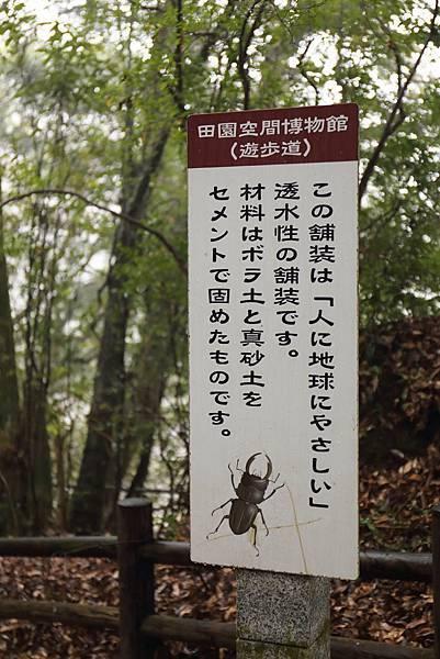20170129_南九州_048.JPG
