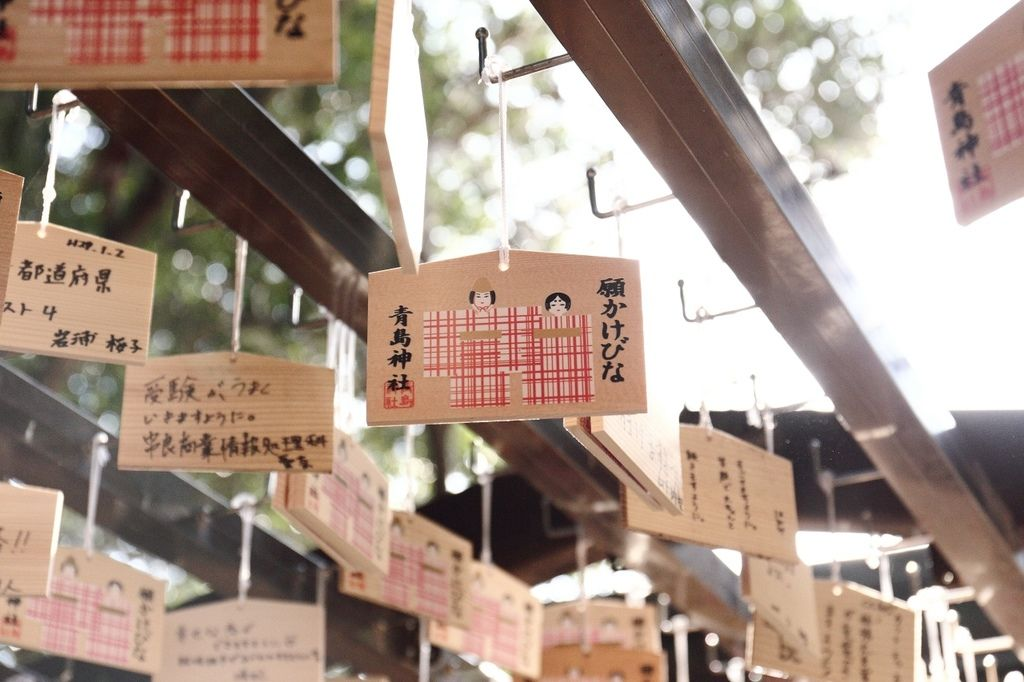 20170130_南九州_147.JPG