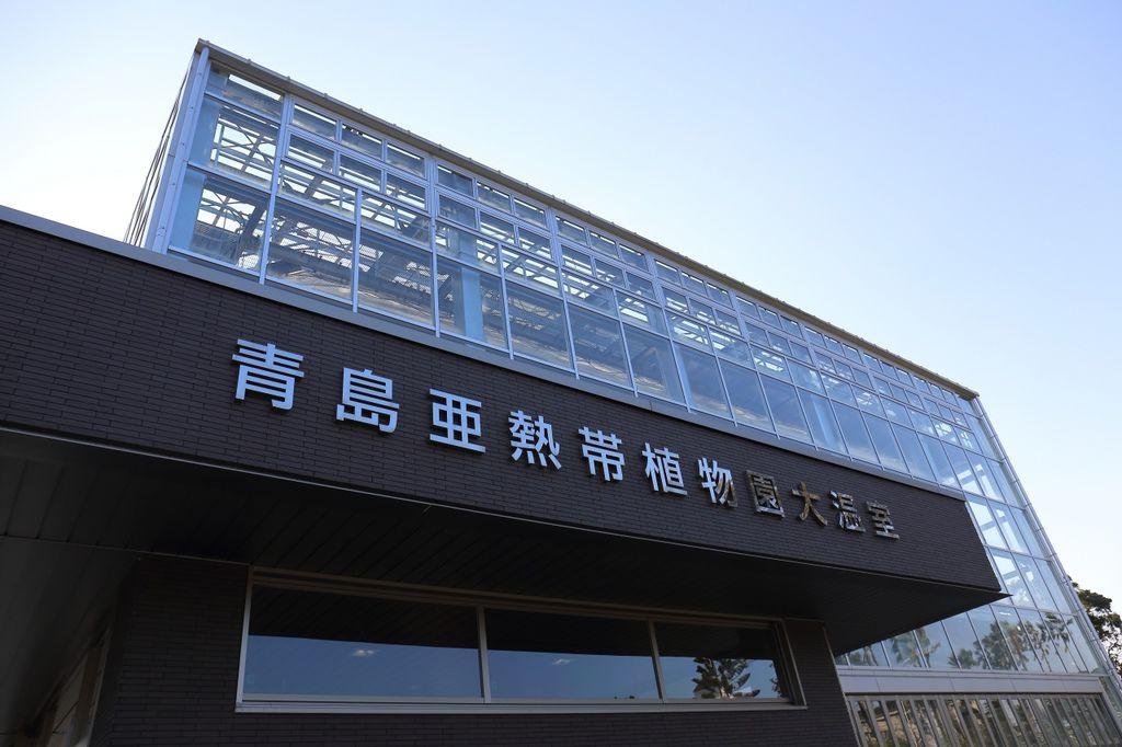 20170130_南九州_166.JPG