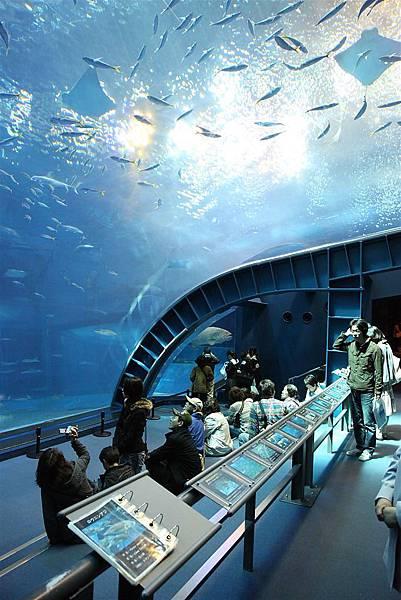 20110316_沖繩_086.JPG