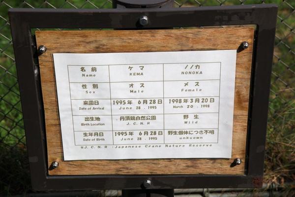 20100904_北海道_036.jpg
