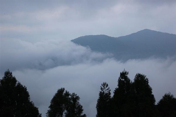 20090628_拉拉山_138.JPG