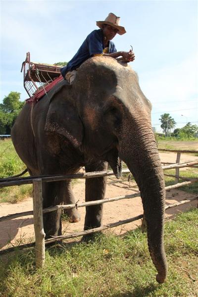 泰國員工旅遊_Day3_020.JPG