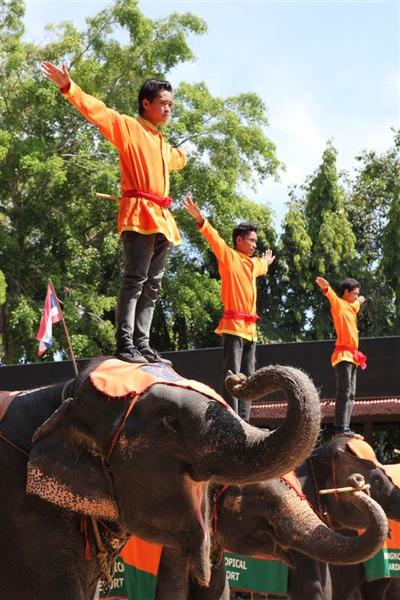 泰國員工旅遊_Day3_072.JPG