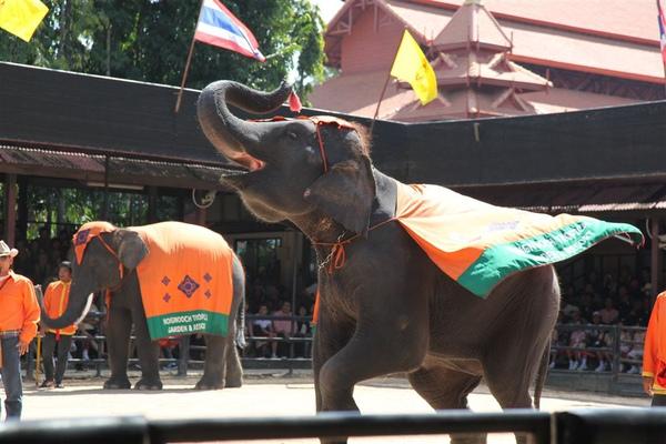 泰國員工旅遊_Day3_074.JPG