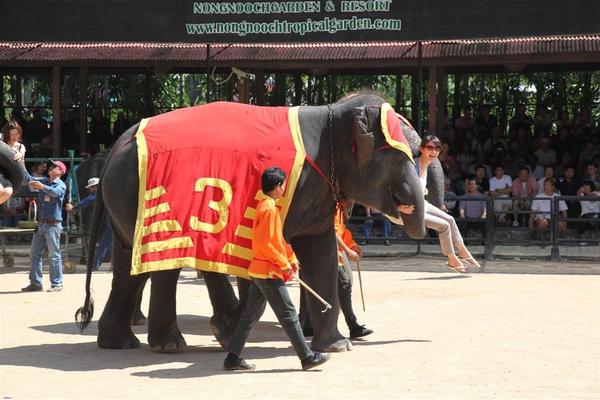 泰國員工旅遊_Day3_082.JPG