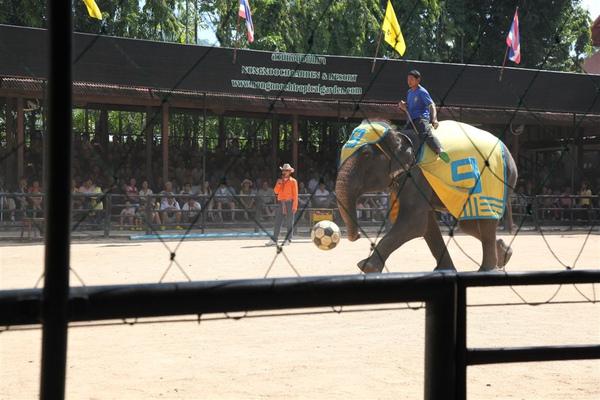 泰國員工旅遊_Day3_087.JPG