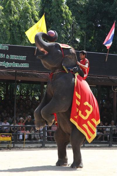 泰國員工旅遊_Day3_091.JPG