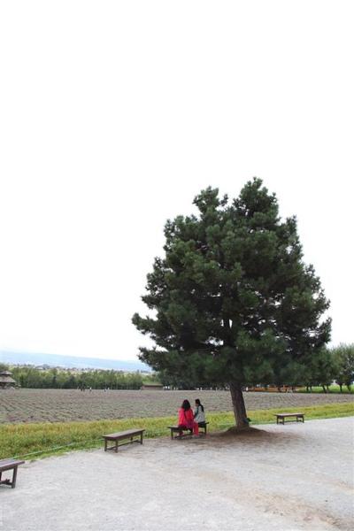 20100905_北海道_038.JPG