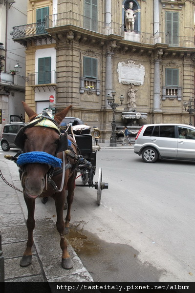 西西里街頭美食17.jpg