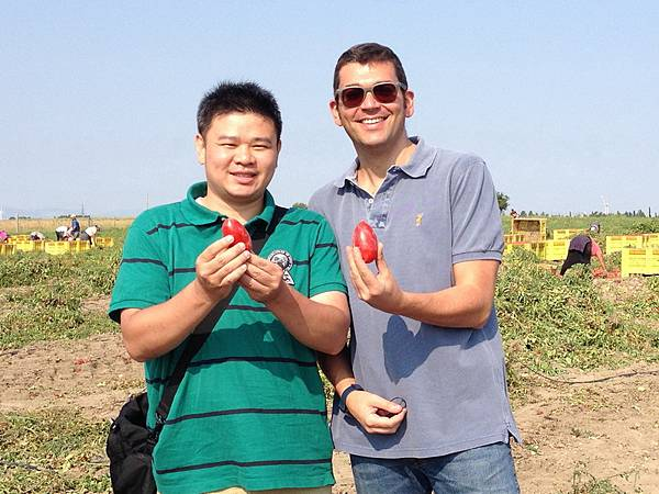 ORO番茄採收之旅23.jpg