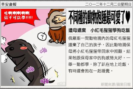新聞畫報20121202