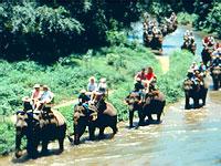 ChiangMai_009c.jpg