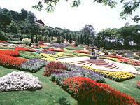 ChiangRai_007a.jpg