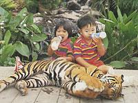 Pattaya_007b.jpg