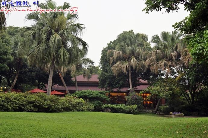 壹等賞景觀茶園
