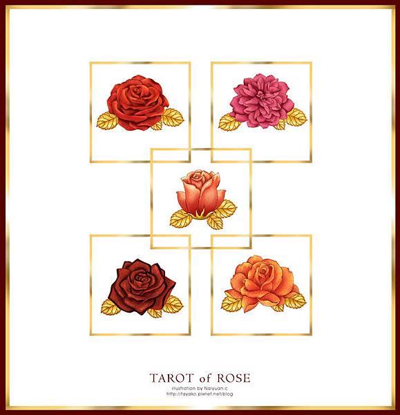 玫瑰83刺塔羅牌插畫設計
