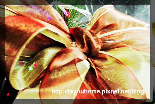 緞帶花.jpg